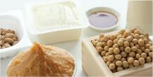 発酵食品資格取得講座