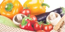 野菜資格取得講座