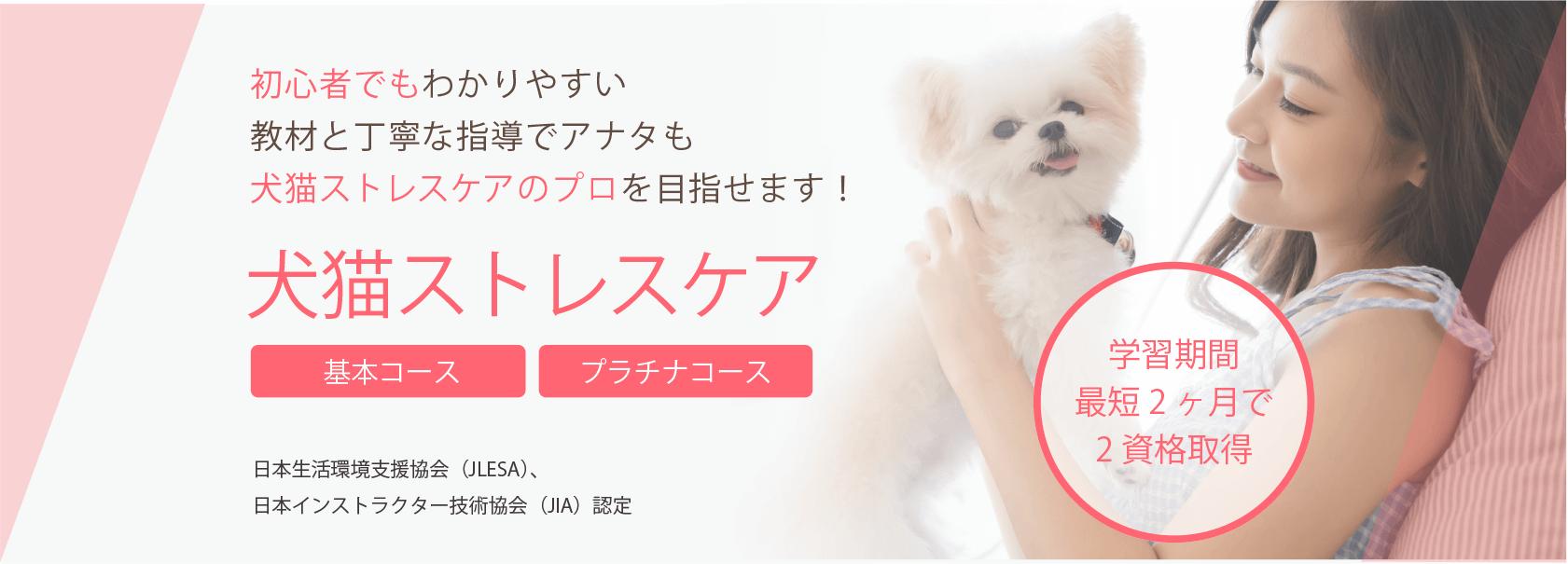 犬猫ストレスケア資格 検定取得の通信講座 通信教育 Saraスクール
