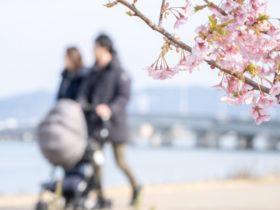 赤ちゃんと出かけたい!月齢別楽しみ方とベビーカーで巡るお散歩スポット紹介