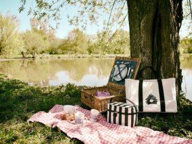 ピクニックデートに行きたい!絶対持っていきたいおすすめお弁当レシピ