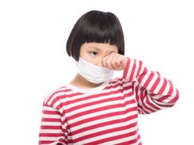 花粉症対策は体内からに目を向けよう!花粉症に効く食べ物紹介!