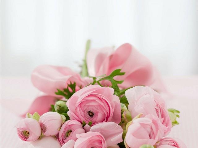 ピンクの薔薇の花束が横になって置かれている