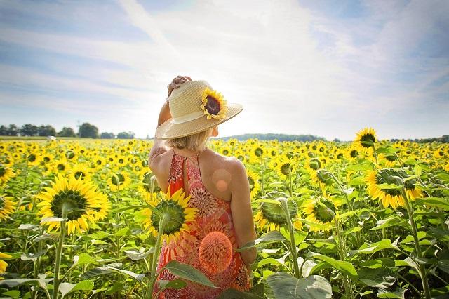 ひまわり畑の中で帽子をかぶった女性が立っている