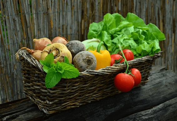 野菜を上手にとって栄養を補給しよう