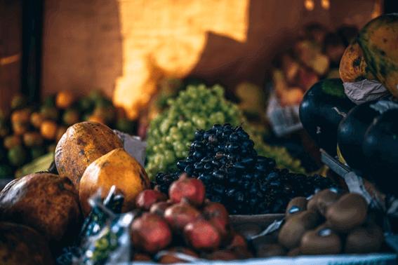 食育は人生を豊かに過ごすための基礎知識