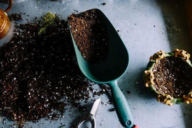 ガーデニング用の基本的な土の種類