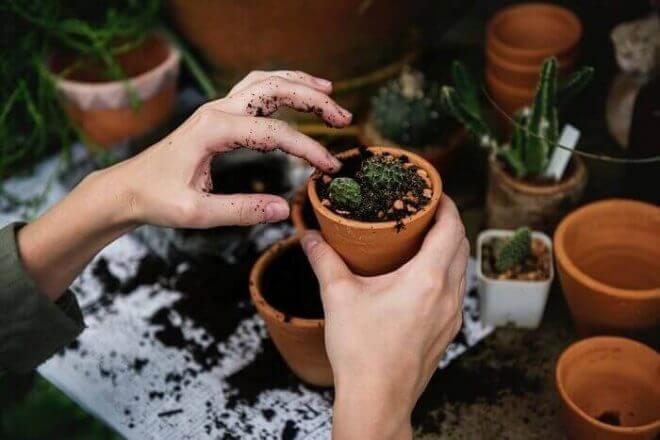 狭い庭でもガーデニングはできる!いますぐできるアイデアを紹介