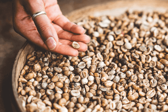 コーヒー豆の焙煎方法をマスターしよう