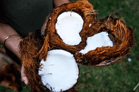 ココナッツオイルの選び方は種類や用途を考慮して決めよう