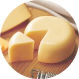 チーズ資格講座