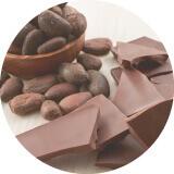 チョコレート資格講座