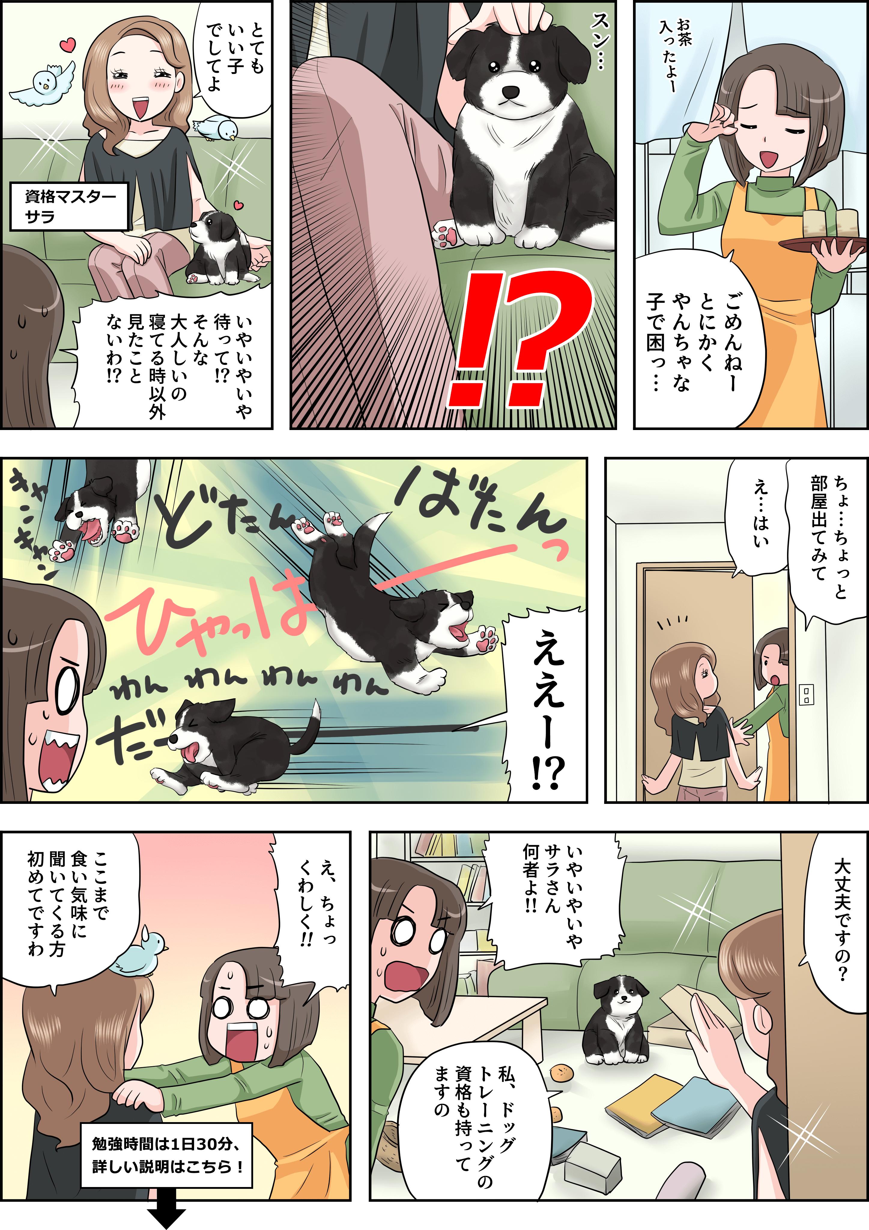 ドッグトレーニングの漫画