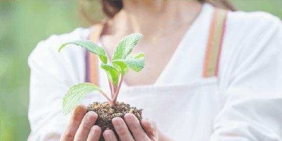 園芸療法士