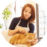 猫資格講座