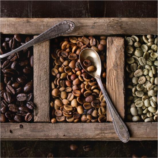 産地別の豆の種類