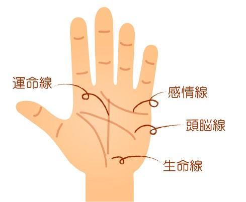 代表的な手相の線