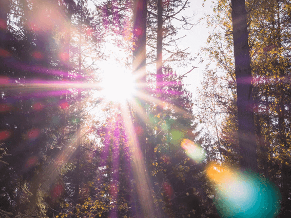ルノルマンカードの「太陽」が表す意味とは?