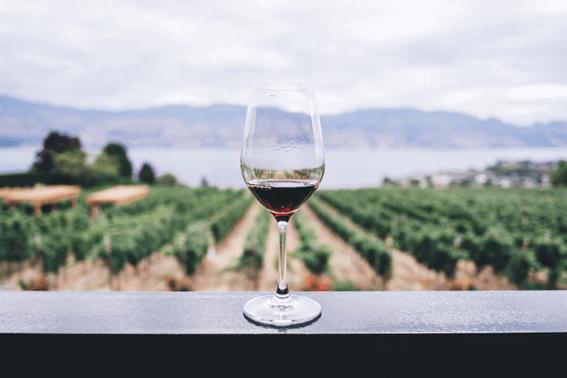 ワインソムリエの資格とは?種類や取得のメリットを紹介