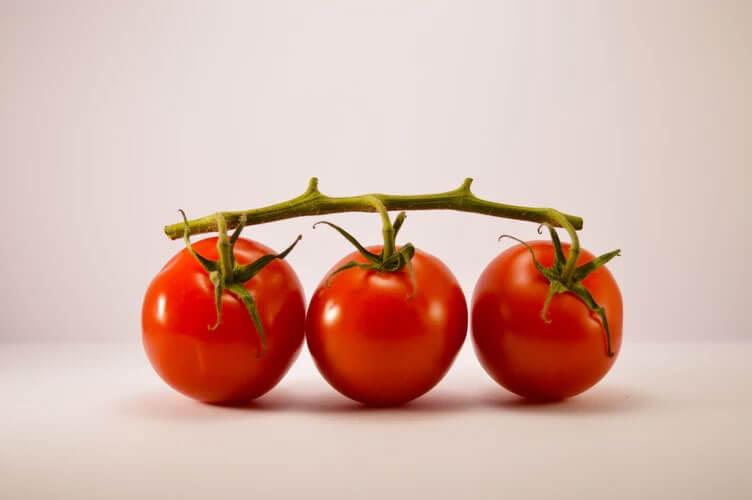 トマトやミニトマトを育てたい︕ベランダ栽培の仕方についてチェック