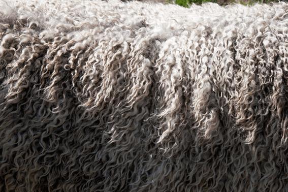 羊毛フェルトの土台作りはどうする?芯材の種類について紹介