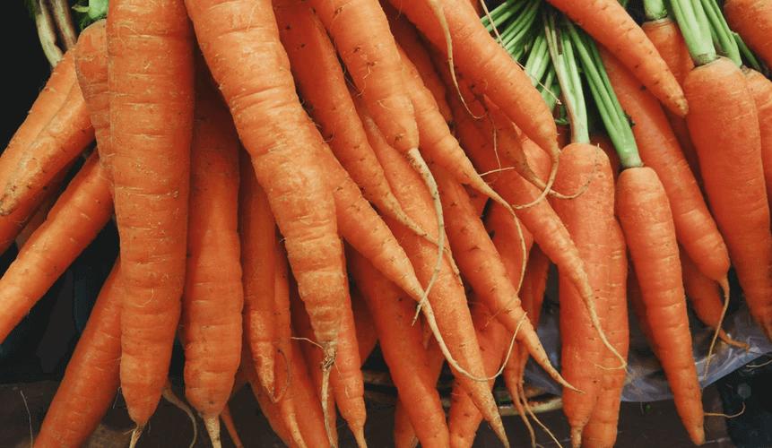 プランターで手軽に野菜を作ろう!どんな野菜を選べばいい?