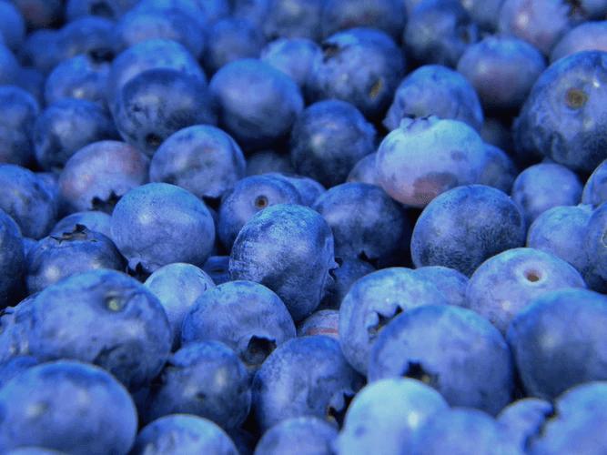 ベランダ菜園で育てられる果物って?種類や育て方をチェック!