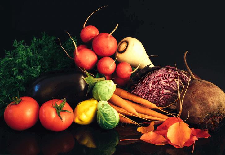 ベランダ菜園の魅力とその概要について