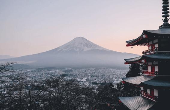 日本においては発酵食品が長く親しまれてきた