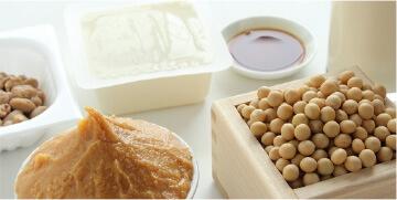発酵食品資格講座