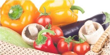 野菜資格講座