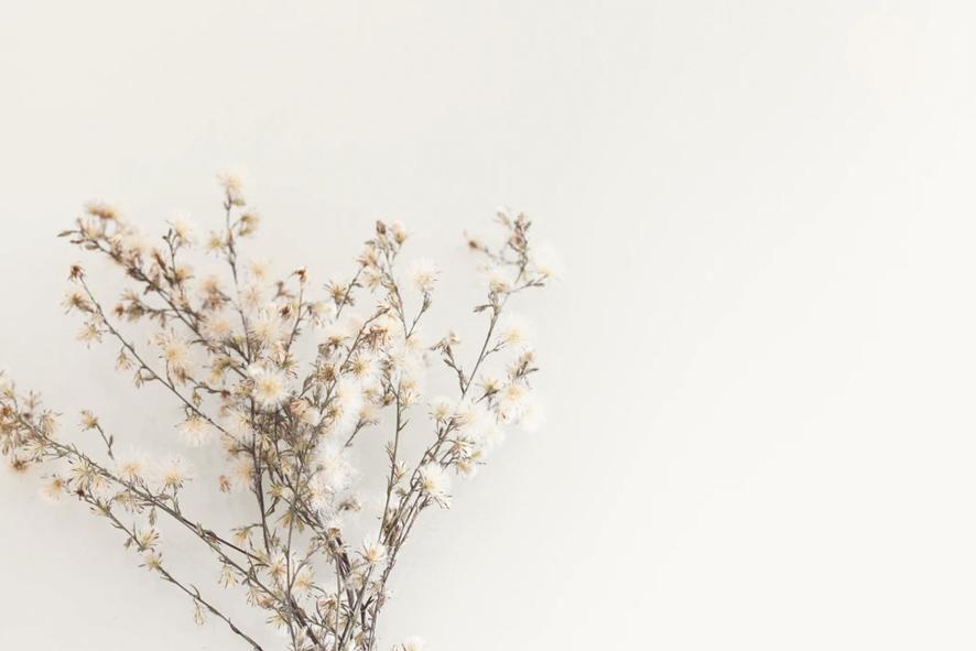 華道と生け花にはさまざまな違いがある