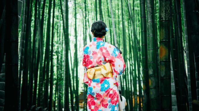 日本の伝統工芸「つまみ細工」とは?歴史と海外への広がりについて知ろう